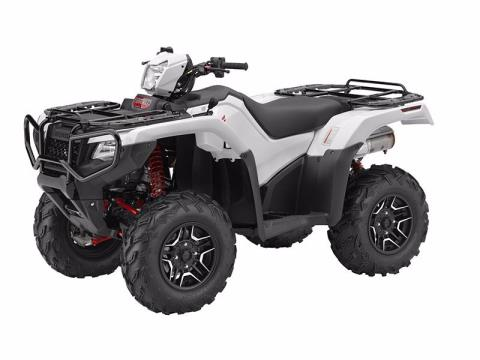 2016 Honda FourTrax® Foreman® Rubicon® 4x4 Automatic DCT EPS Deluxe in Springfield, Missouri