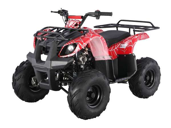 2015 125 Automatic Kids quad