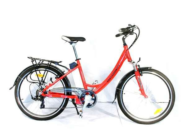 2015 TDE203Z Electric bike