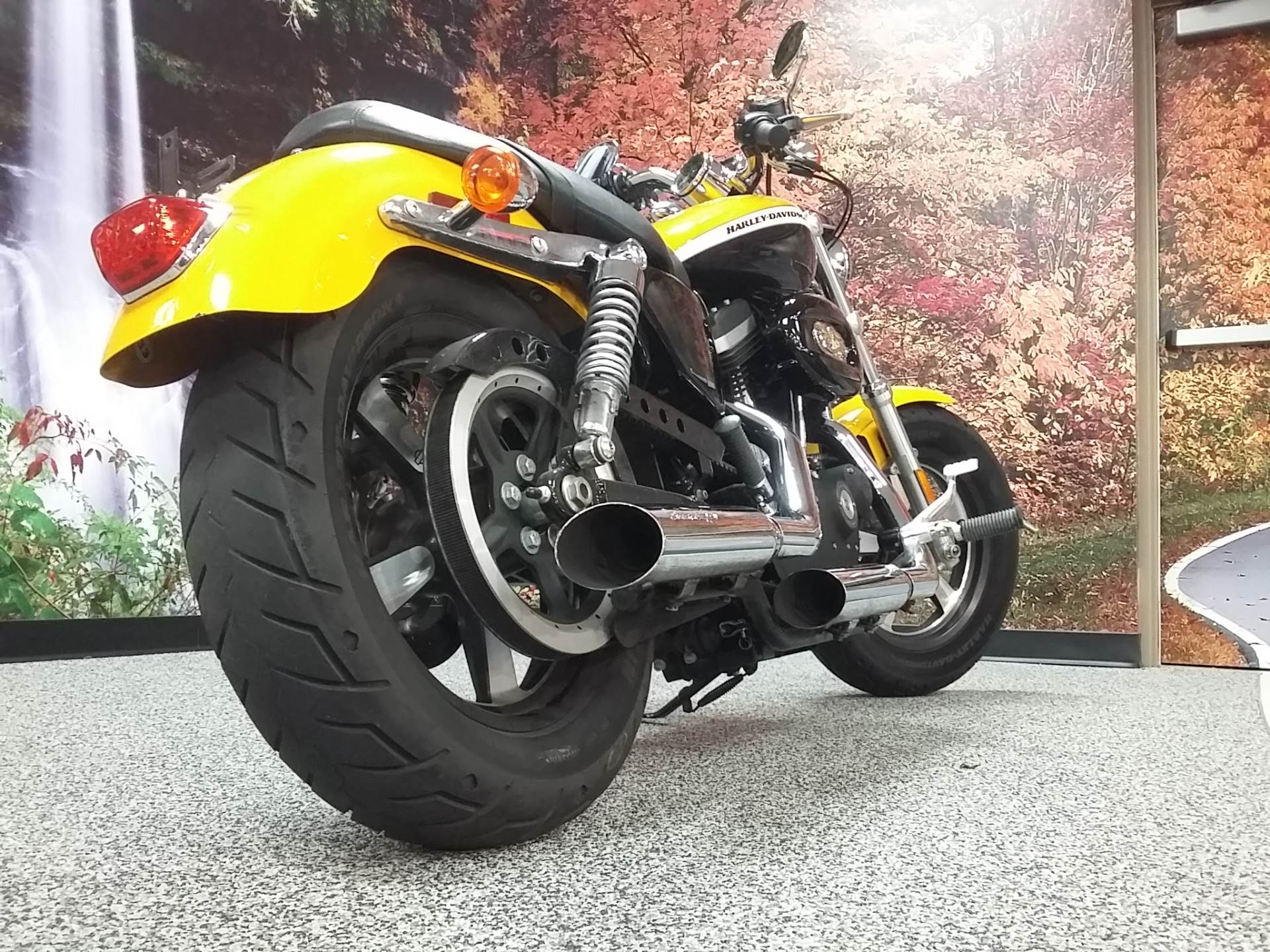 2012 Harley-Davidson XL1200C in Knoxville, Tennessee