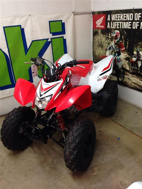 2017 Honda TRX®250X Special Edition in Florence, Kentucky