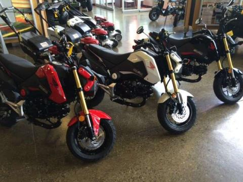 2015 Honda Grom in Middletown, New York