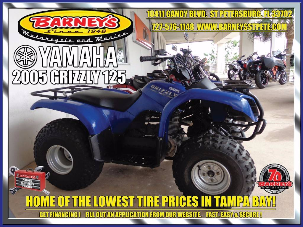 2005 Grizzly 125