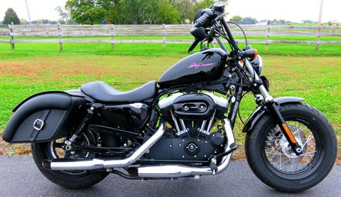 2014 Harley-Davidson Sportster® Forty-Eight® in Marengo, Illinois