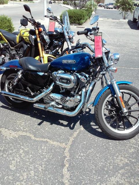2009 Harley-Davidson Sportster® 1200 Low in Victorville, California