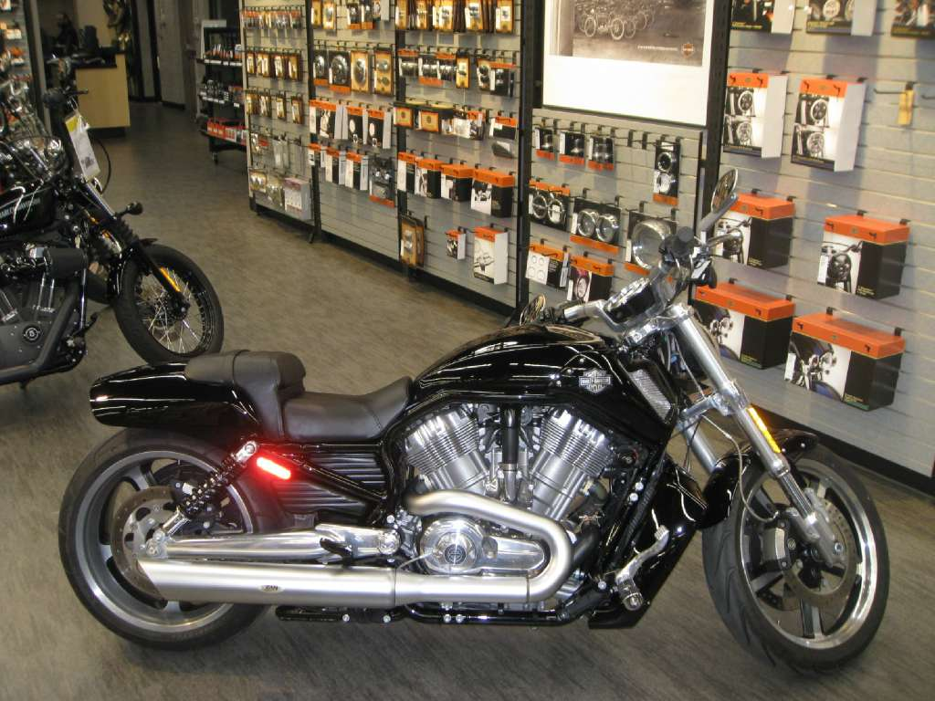 2014 V-Rod Muscle