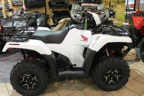 2016 Honda FourTrax® Foreman® Rubicon® 4x4 Automatic DCT EPS Deluxe in Allen, Texas