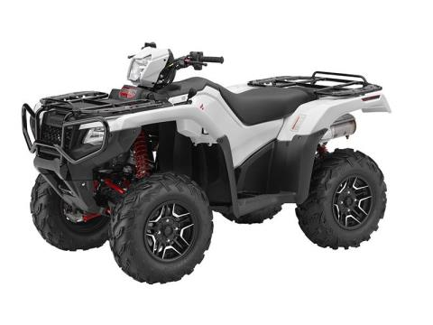 2016 Honda FourTrax® Foreman® Rubicon® 4x4 Automatic DCT EPS Deluxe in Warsaw, Indiana