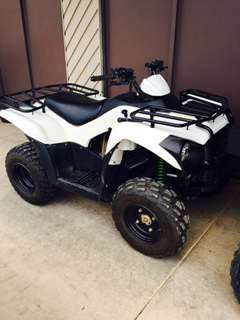 2015 Kawasaki Brute Force® 300 in Kenner, Louisiana
