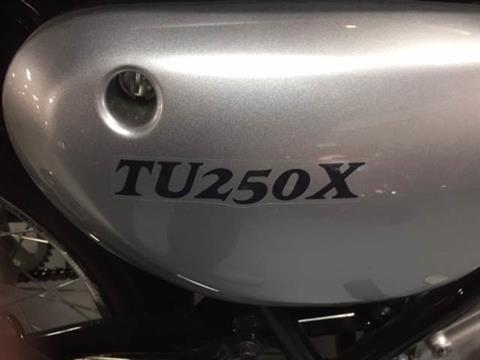 2013 Suzuki TU250X in Fairfield, Illinois