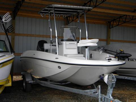 2017 Bayliner Element F18 in Young Harris, Georgia