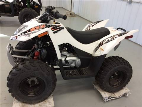 2016 Arctic Cat DVX™ 90 in Gaylord, Michigan