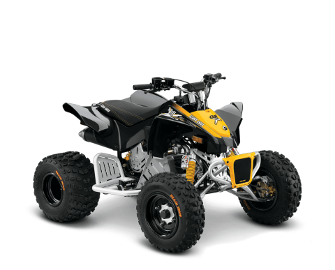 2016 Can-Am DS 90™  X® in Grimes, Iowa