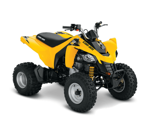 2016 Can-Am DS 250® in Las Vegas, Nevada