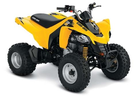 2017 Can-Am DS 250® in Johnson Creek, Wisconsin