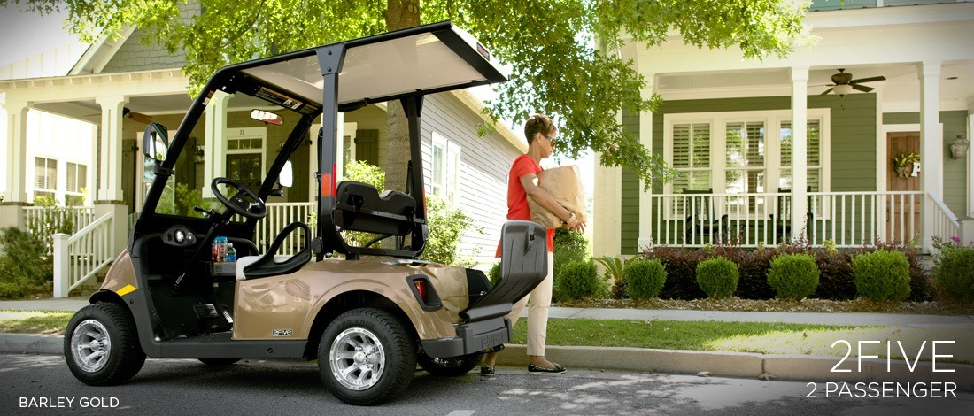 2016 E-Z-Go 2Five™ 2-Passenger in Iron Station, North Carolina
