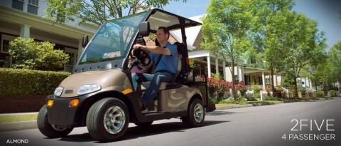 2016 E-Z-Go 2Five™ 4-Passenger in Iron Station, North Carolina