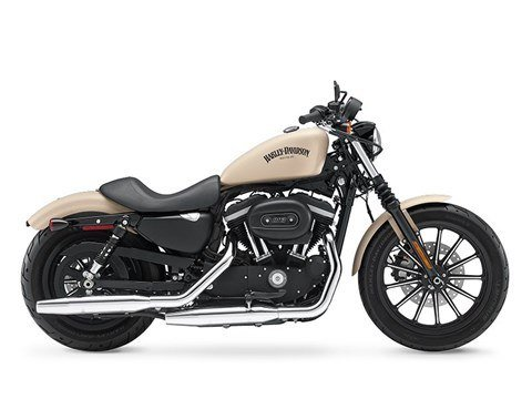 2015 Harley-Davidson Iron 883™ in Milwaukee, Wisconsin