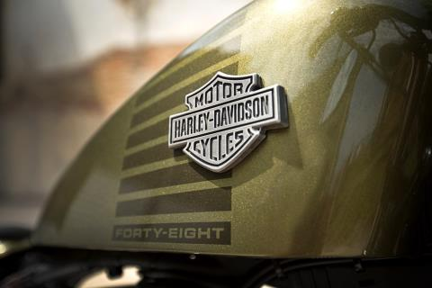 2016 Harley-Davidson Forty-Eight® in Knoxville, Tennessee