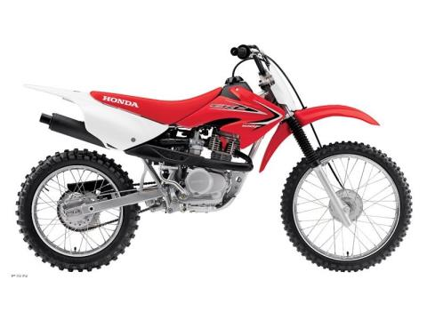 2013 Honda CRF®100F in Jamestown, New York
