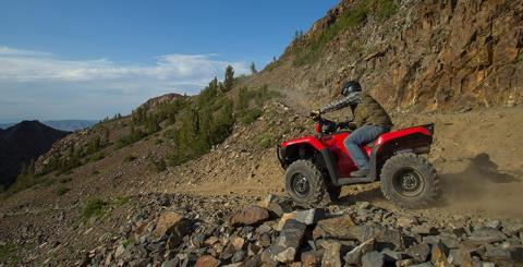 2015 Honda FourTrax® Foreman® 4x4 ES EPS in Brighton, Michigan