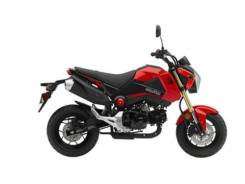 2015 Honda Grom® in Oakdale, New York