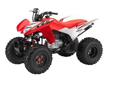 2016 Honda TRX®250X SE in Greeneville, Tennessee