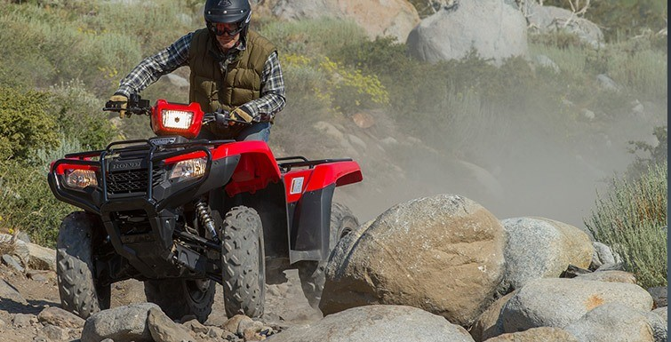 2016 Honda FourTrax® Foreman® 4x4 Power Steering in Fontana, California