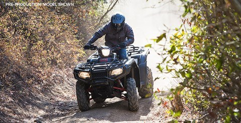 2016 Honda FourTrax® Foreman® Rubicon® 4x4 EPS Deluxe in Fontana, California