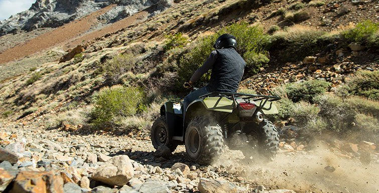 2016 Honda FourTrax® Rincon® in Columbia, South Carolina