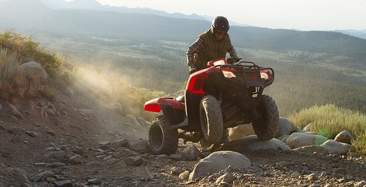 2017 Honda FourTrax® Foreman® 4x4 in Brighton, Michigan