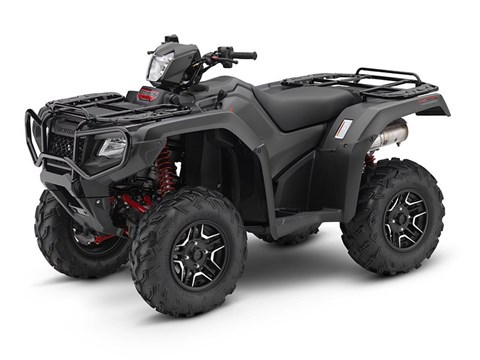 2017 Honda FourTrax® Foreman® Rubicon® 4x4 DCT EPS Deluxe in Columbia, South Carolina