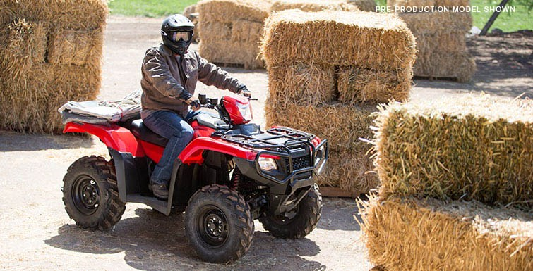2017 Honda FourTrax® Foreman® Rubicon® 4x4 EPS in Brighton, Michigan