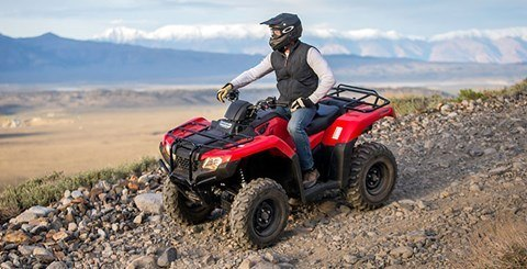 2017 Honda FourTrax® Rancher® 4x4 DCT EPS in Brighton, Michigan