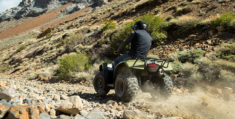 2017 Honda FourTrax® Recon® in Greenwood Village, Colorado