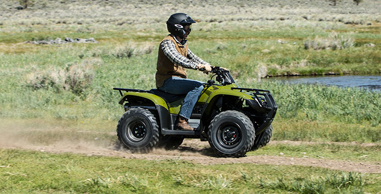 2017 Honda FourTrax® Recon® ES in Brighton, Michigan