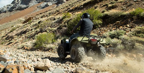 2017 Honda FourTrax® Recon® ES in Fontana, California