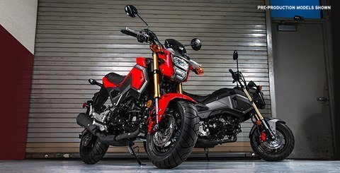 2017 Honda Grom® in Pompano Beach, Florida