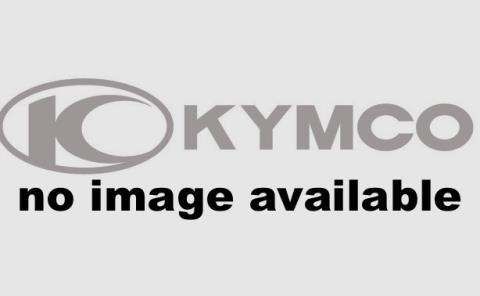 2016 Kymco Agility 125 in Oakland, California