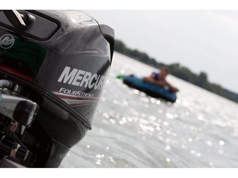 2016 Mercury Marine 20 hp FourStroke (15 in) in South Windsor, Connecticut