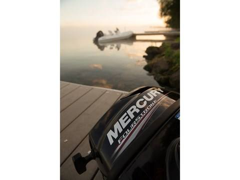 2016 Mercury Marine 2.5 hp FourStroke in Trego, Wisconsin