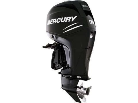 2017 Mercury Marine 175 Verado in Fleming Island, Florida