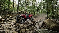 2017 Polaris Ace® 500 in Brighton, Michigan
