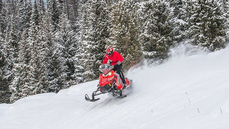 2017 Polaris 800 Switchback® PRO-S ES in Mount Pleasant, Michigan
