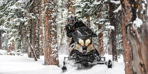2017 Ski-Doo Renegade® Enduro™ 800R E-TEC® E.S. in Pendleton, New York