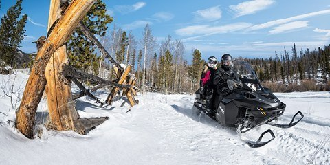 2017 Ski-Doo Expedition® SE 900 ACE™ in Pendleton, New York