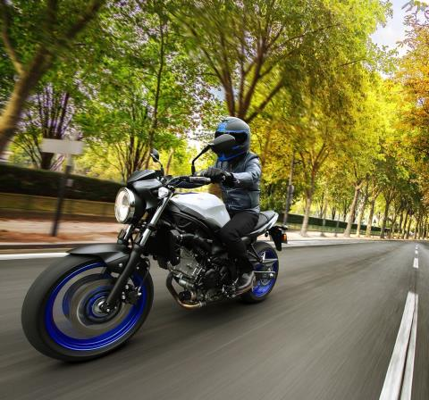 2017 Suzuki SV650 ABS in Greenwood Village, Colorado