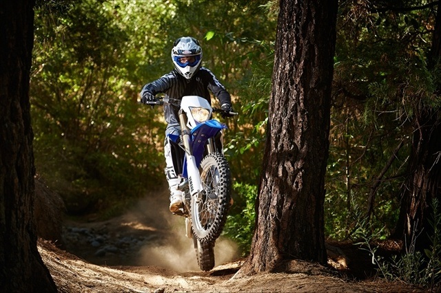 2015 Yamaha WR450F in Brighton, Michigan