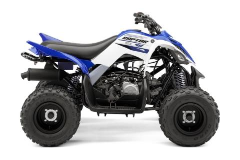 2016 Yamaha Raptor 90 in Johnson Creek, Wisconsin