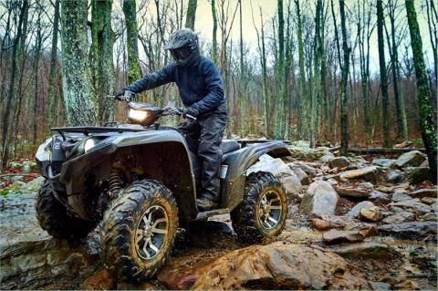 2016 Yamaha Grizzly EPS SE in Johnson Creek, Wisconsin